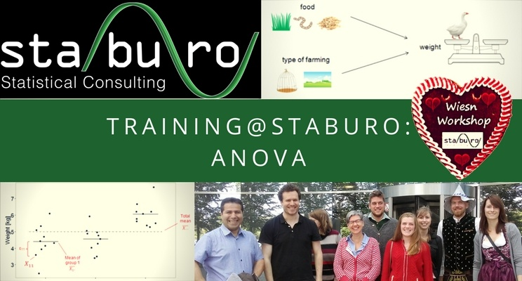 Training@Staburo: ANOVA