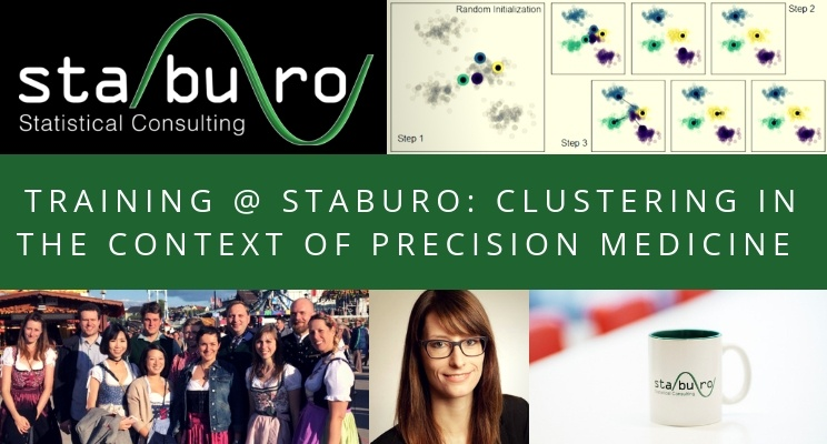 Training @ Staburo: clustering in the context of precision medicine